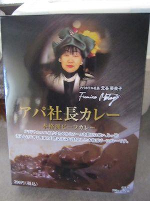 kanazawa Ryokan Onsen Inn Samurai ninjya geisya cheap Takayama Shirakawago Kyoto